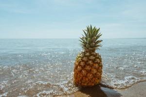 beach-1834329__340